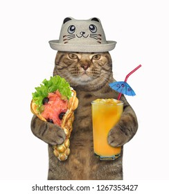 The cat in a funny hat holds a glass of orange juice and soft waffles with salmon. White background.