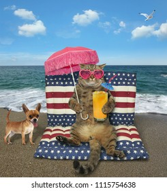The cat with a glass of orange juice sits on a air bed under a pink umbrella on the beach. The dog is next to him.