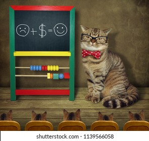 The cat in glasses and a bow tie teaches funny mathematics to its students.