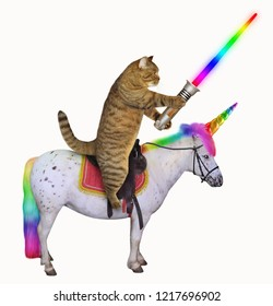 The cat with a glowing  sword is riding the real unicorn. White background.
