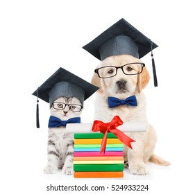 Cat and Golden retriever puppy with black graduation hats and eyeglasses sitting together. isolated on white background