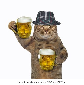 The cat in a gray hat is holding two mugs of beer. White background. Isolated.