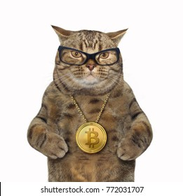 The cat has a bitcoin locket around its neck. White background.