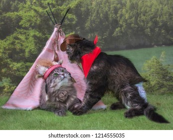 A cat in a headdress of Indian women in a wigwam and a cat in the image of a cowboy