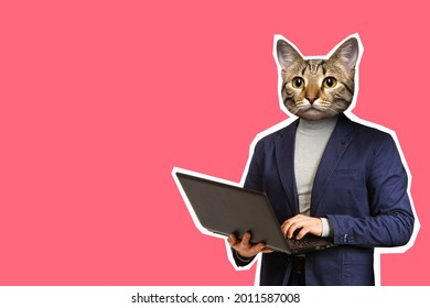 Cat headed man using laptop. Modern collage. The man with the cat head uses a laptop. The character of a person is expressed through an animal. A man with a cat head in a business suit.