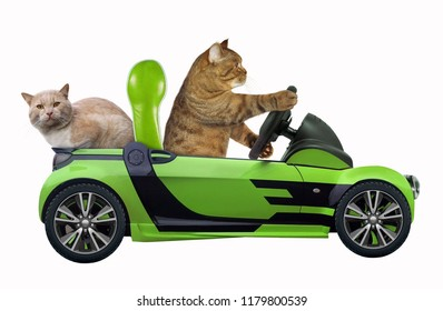 The cat with his friend is in the green open car. White background.