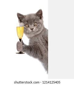 Cat holding glass of champagne behind white banner. isolated on white background