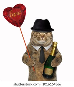 The cat holds a bottle of champagne and a ruby heart. White background.