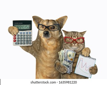 The cat holds a notebook with a financial chart and a fan of dollars. The dog holds an accounting calculator. They stand hugging. White background. Isolated.