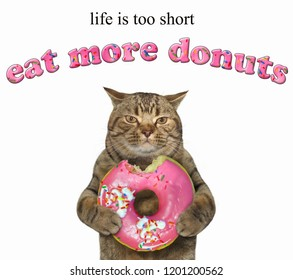 The cat holds a pink bitten doughnut. Life is too short. Eat more donuts. White background.