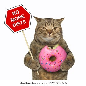 """The cat holds a sign """" no more diets """" and a big bitten pink donut. White background."""