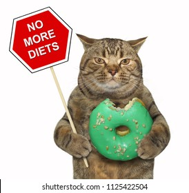 """The cat holds a sign """" no more diets """" and a big bitten green donut. White background."""
