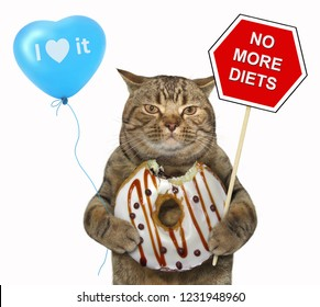 """The cat holds a sign """" no more diets """", a blue balloon and a chocolate bitten donut. White background."""