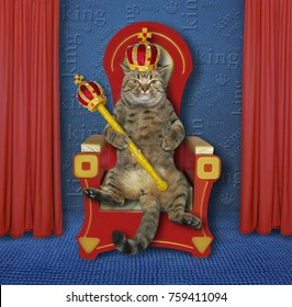The cat king is sitting on the throne in the room.