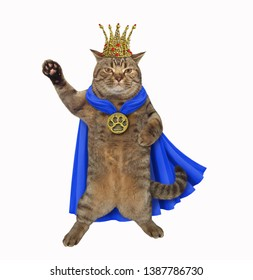 The cat king is wearing a blue cloak, a crown and a golden locket. White background. Isolated.