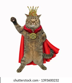 The cat king is wearing a red cloak, a crown and a golden locket. White background. Isolated.
