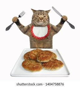 The cat with a knife and a fork sits in front of the square plate of meat patties. White background. Isolated.