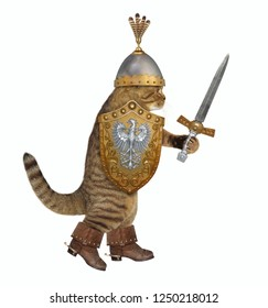 The cat knight in a boots and a helmet with feathers holds a sword and a shield. White background.