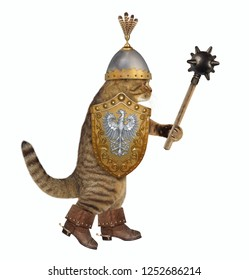 The cat knight in a boots with spurs and a helmet with feathers holds a spiked mace and a shield. White background.