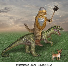 The cat knight with a spiked mace and a shield is riding the dragon in the field. His dog is next to him.
