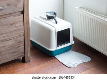 Cat litter box in a dutch house
