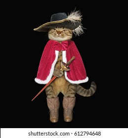 The cat looks like a real musketeer. Black background.