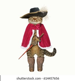 The cat looks like a real musketeer. White background.