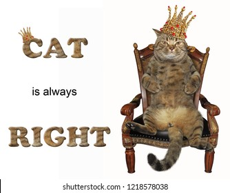 The cat lord in a crown is sitting on the throne. White background.
