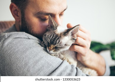 Cat and man, portrait of happy cat with close eyes and young beard man. Handsome young man is hugging and cuddling his cute color point Devon Rex Kitten. Domestic pets concept