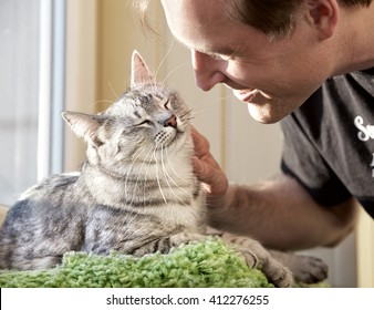 Cat and man, portrait of happy cat with close eyes and young man, people playing with the kitten. Handsome Young Animal-Lover Man, Hugging and Cuddling his Gray Domestic Cat Pet