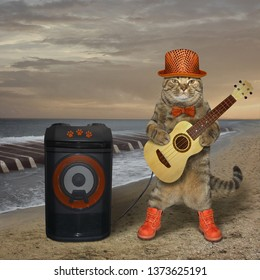 The cat musician is playing the guitar near the sound speaker on the deserted beach. The sea waves looks like the piano keys.