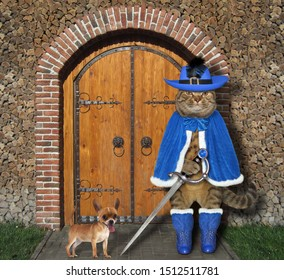 The cat musketeer in a blue cloak, a hat with a feather and boots holds a sword at the gate of the castle. His dog is next to him.