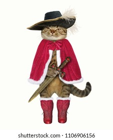 The cat musketeer in the hat holds a sword. White background.
