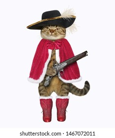 The cat musketeer in a red cloak, boots and a black hat with a feather holds a flintlock pistol. White background. Isolated.