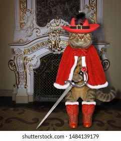 The cat musketeer in a red cloak, a hat with a feather and boots holds a sword near a fireplace in the palace.
