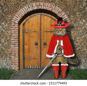 The cat musketeer in a red cloak, a hat with a feather and boots holds a sword at the gate of the castle.
