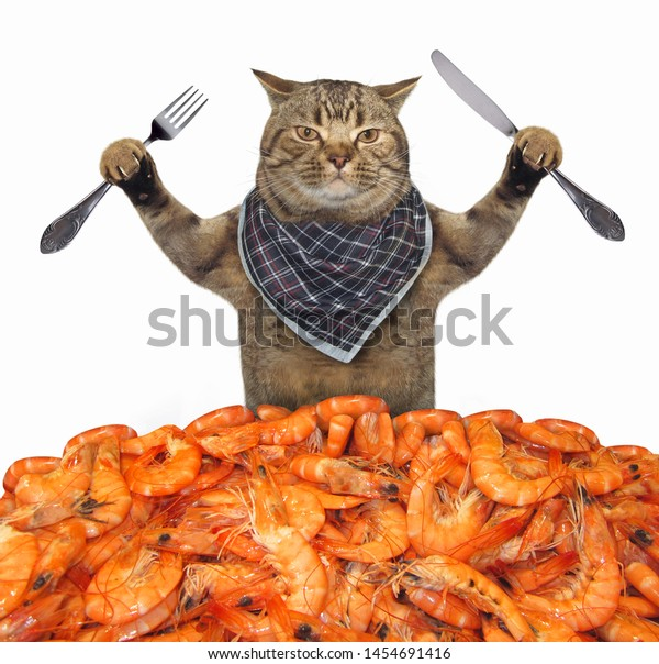 The cat in a napkin neck with a knife and a fork is behind a pile of boiled shrimp. White background. Isolated.