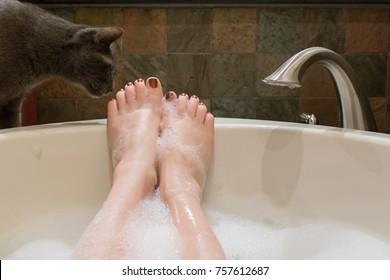 Cat next to bubble bath