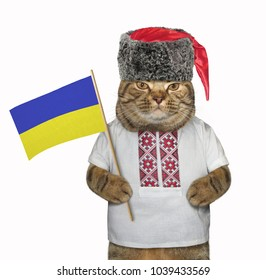 The cat patriot in the cossack hat holds the flag of Ukraine. White background.