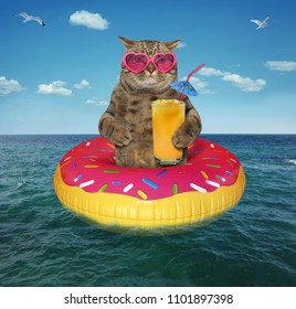 The cat in a pink sunglasses with a glass of fruit juice is on the on inflatable circle in the sea.