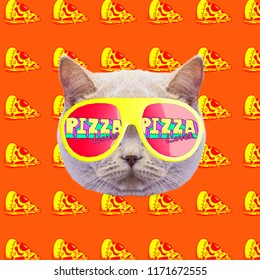Cat pizza lover mood. Contemporary art collage. Funny Fast food project