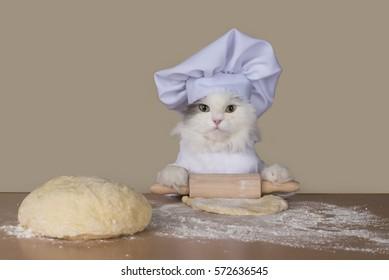 cat prepares the dough for baking