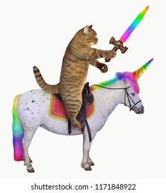 The cat with a rainbow sword is riding the real unicorn. White background.