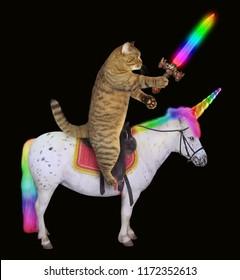 Cat Rides A Horse Images Stock Photos Vectors Shutterstock