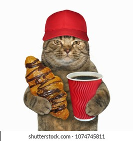 The cat in a red baseball cap holds a cup of coffee and a chocolate croissant. White background.