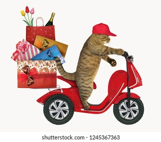 The cat in red cap rides a moped with the gift bags. White background.