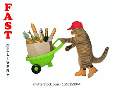 The cat in a red cap and yellow boots is pushing the green wheelbarrow with a grocery bag full of food. Fast delivery.