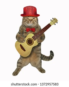 The cat in a red hat and a bow tie is playing the acoustic guitar. White background. Isolated.
