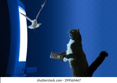 Cat with a remote control watching a television animal documentary and getting all excited and sitting up and meowing at bird flying out of the tv screen.