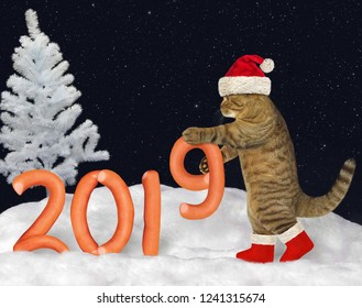 The cat in Santa Claus hat builds the number 2019 of the figures made from sausage on the snow in the forest.